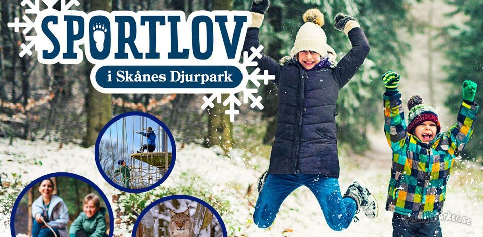 Skånes Djurpark smygöppnar under sportlovsvecka 8